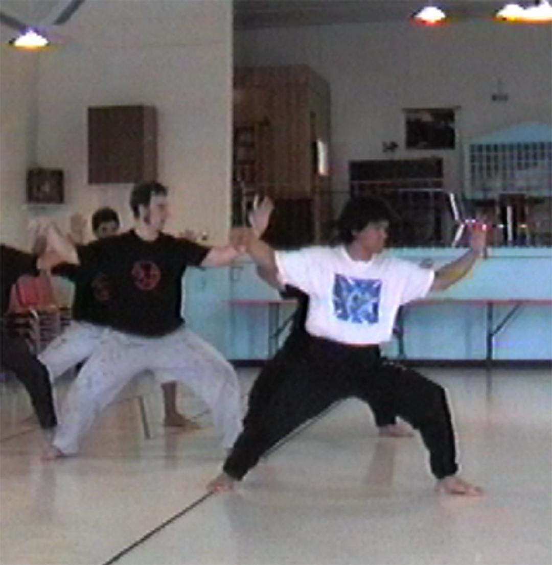 Pratique du taijiquan avec Maître Tokitsu
