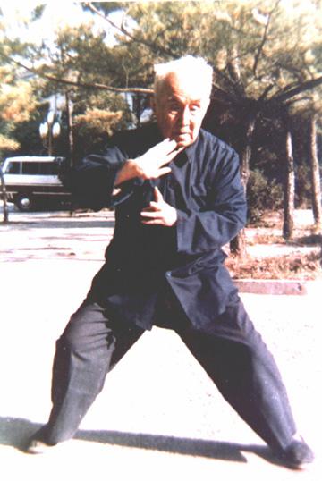 Maître Hong Junsheng
