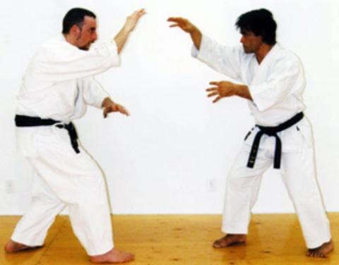 Philippe Munn & Me Kenji Tokitsu kumite
