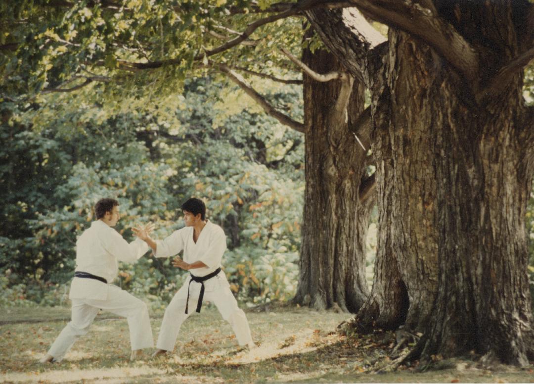 Philippe Munn practicing tuishou with Kenji Tokitsu